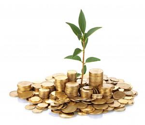 Sissetuleku kaitse, laenukindlustus